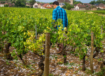 Orages en Bourgogne