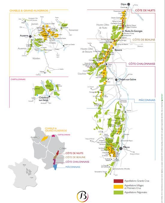 Une sélection représentative des vins de Bourgogne