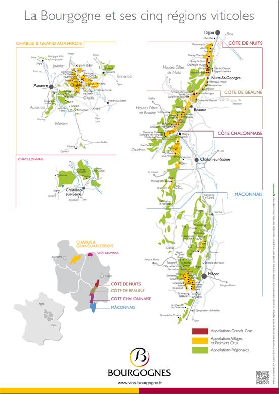 Les 5 régions viticoles de Bourgogne