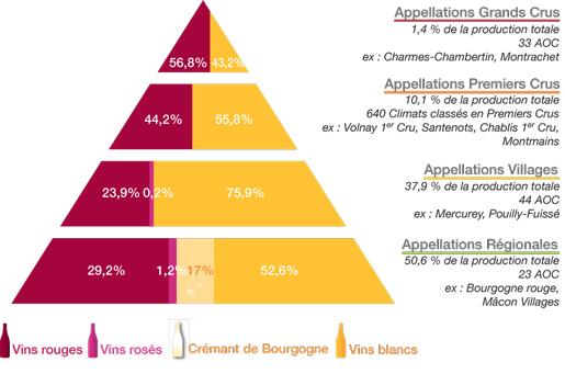 classement_vin_bourgogne