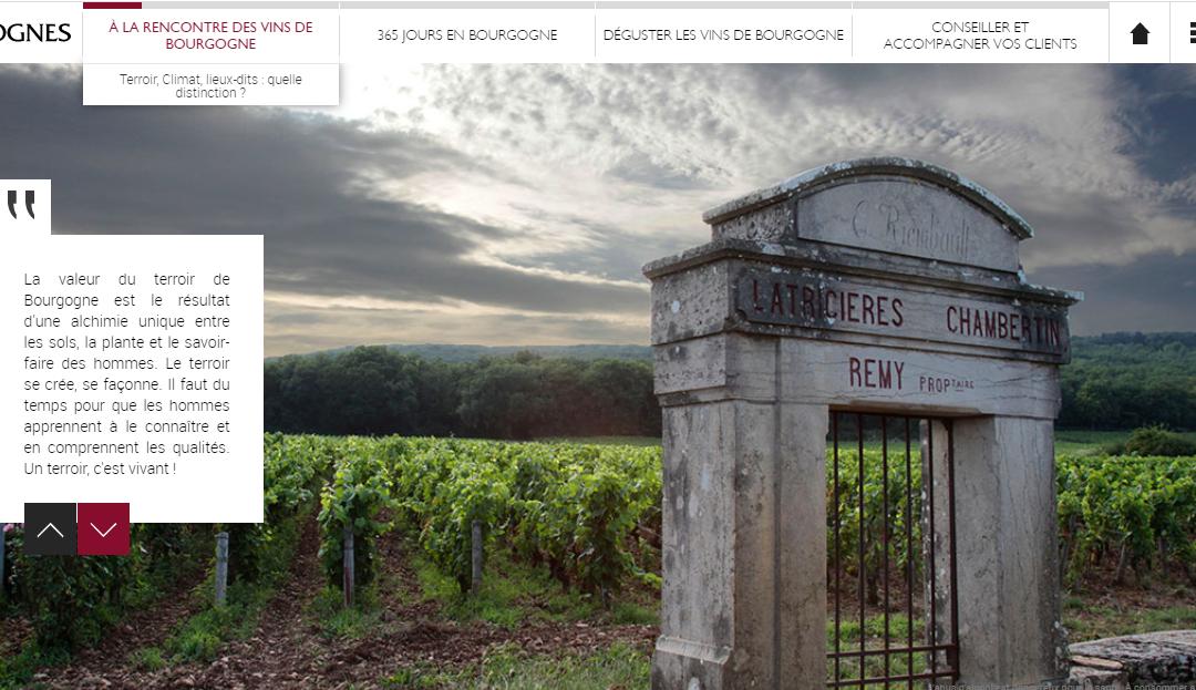 Une formation gratuite en ligne pour devenir expert en vins de Bourgogne