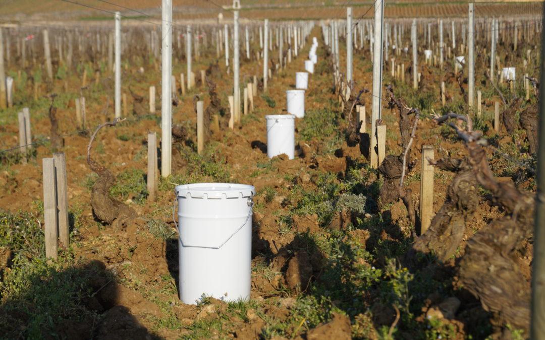En images : la Bourgogne s'enflamme pour lutter contre le gel