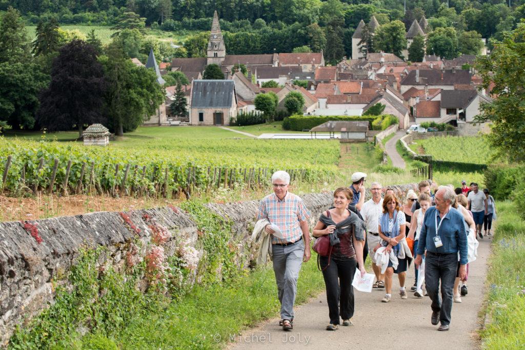 Mois des climats trois idées balade Bourgogne