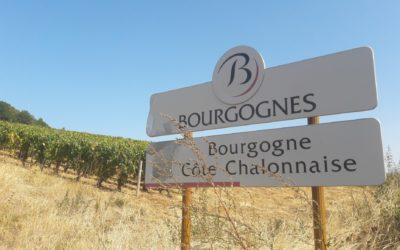 """Les 13 bourgognes """"identifiés"""" : des appellations discrètes à connaître"""